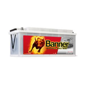 banner Buffalo Bull SHD SHD67033